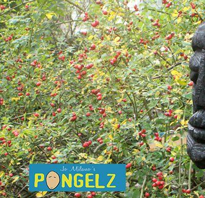 PONGELZ Skulpturen: Blakki